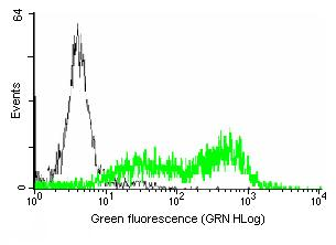 Flow Cytometry - HFE antibody (ab88212)