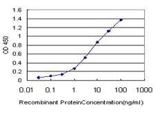 ELISA - ESE1 antibody (ab89418)