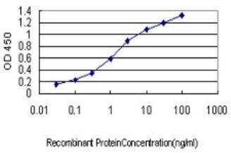 ELISA - AKT3 antibody (ab89430)