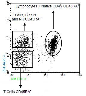 Flow Cytometry - CD45RA antibody [GRT22] (Phycoerythrin) (ab90973)