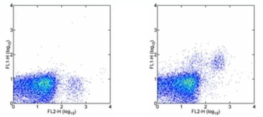 Flow Cytometry - CD244 antibody [244F4] (FITC) (ab95805)