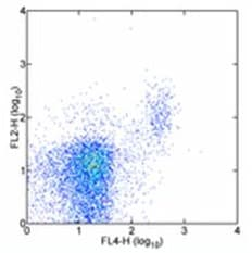 Flow Cytometry - CD244 antibody [244F4] (Phycoerythrin) (ab95807)