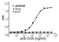 Indirect ELISA - Human Oct4 protein fragment (ab95845)