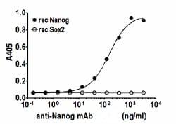 Indirect ELISA - Nanog protein (Human) (ab95846)