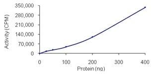 Functional Studies - PAK4 protein (Active) (ab96405)