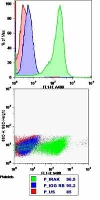 Flow Cytometry - Anti-IRAK-1 antibody (ab238)
