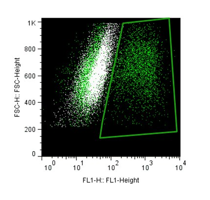 Flow Cytometry - Anti-GFP antibody - ChIP Grade (ab290)