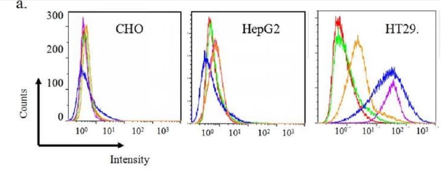 Flow Cytometry - Anti-6X His tag® antibody (FITC) (ab1206)