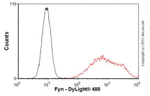 Flow Cytometry - Anti-Fyn antibody [FYN-01] (ab1881)