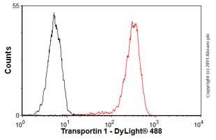 Flow Cytometry - Anti-Transportin 1/MIP antibody [D45] (ab10303)