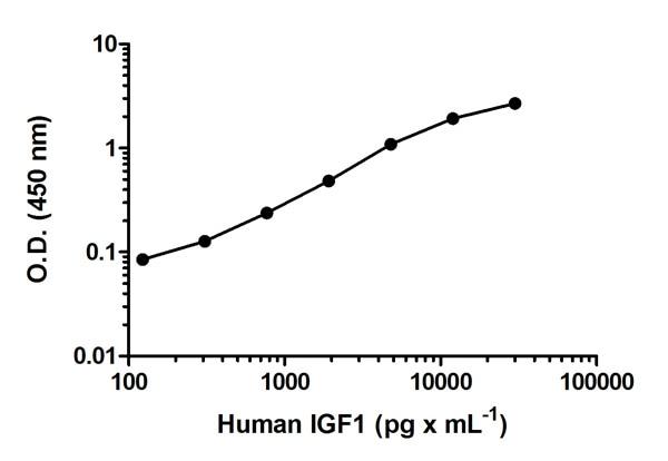 Sandwich ELISA - IGF1 Human ELISA Kit (ab100545)