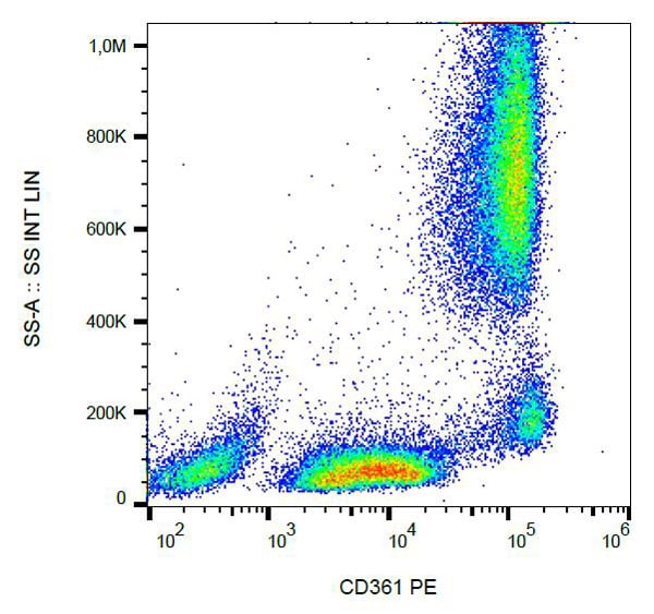 Flow Cytometry - PE Anti-EVI2B antibody [MEM-216] (ab101040)
