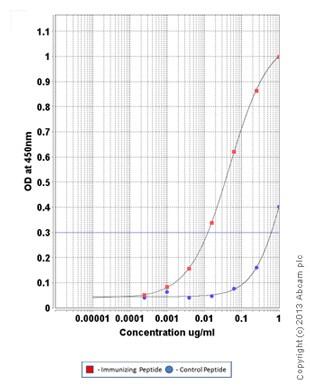 ELISA - Anti-ErbB 3 (phospho Y1289) antibody (ab101407)