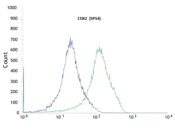 Flow Cytometry - Anti-CDX2 antibody [SP54] (ab101532)