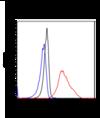 Flow Cytometry - Anti-Stathmin 1 antibody [SP49] (ab101690)