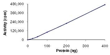 Functional Studies - Recombinant human MAP4K4/NIK protein (ab101775)