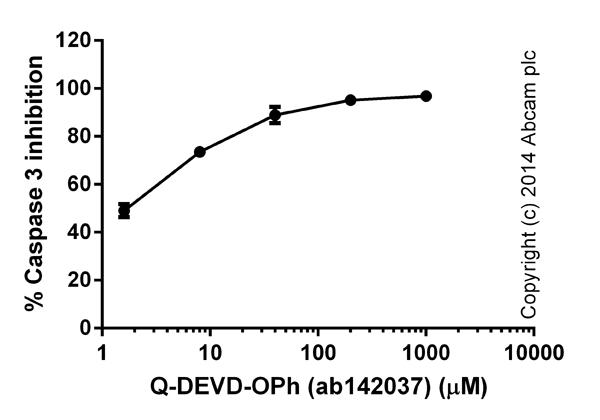 Functional assays: Caspase-3 Inhibitor Drug Detection Kit (ab102491)