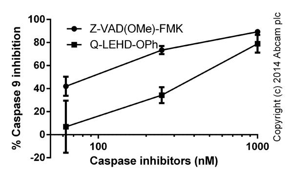 Functional assays: Caspase 9 Inhibitor Drug Detection Kit (ab102497)