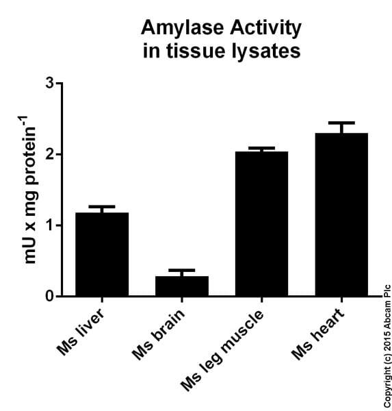 Functional Studies - Amylase Assay Kit (ab102523)
