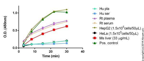 Functional Studies - Glutamate Dehydrogenase Detection Kit (ab102527
