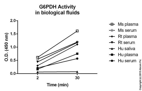 Functional Studies - Glucose 6 Phosphate Dehydrogenase Colorimetric Assay Kit (ab102529)