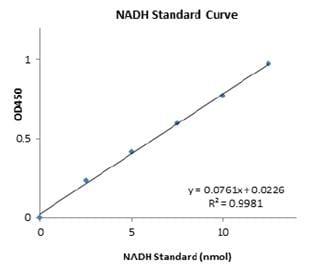 Functional Studies - Glucose 6 Phosphate Dehydrogenase Assay Kit (ab102529)