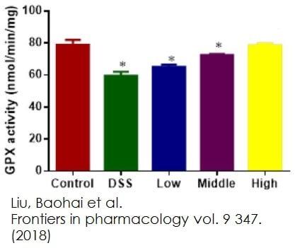 Functional Studies - Glutathione Peroxidase Assay Kit (Colorimetric) (ab102530)