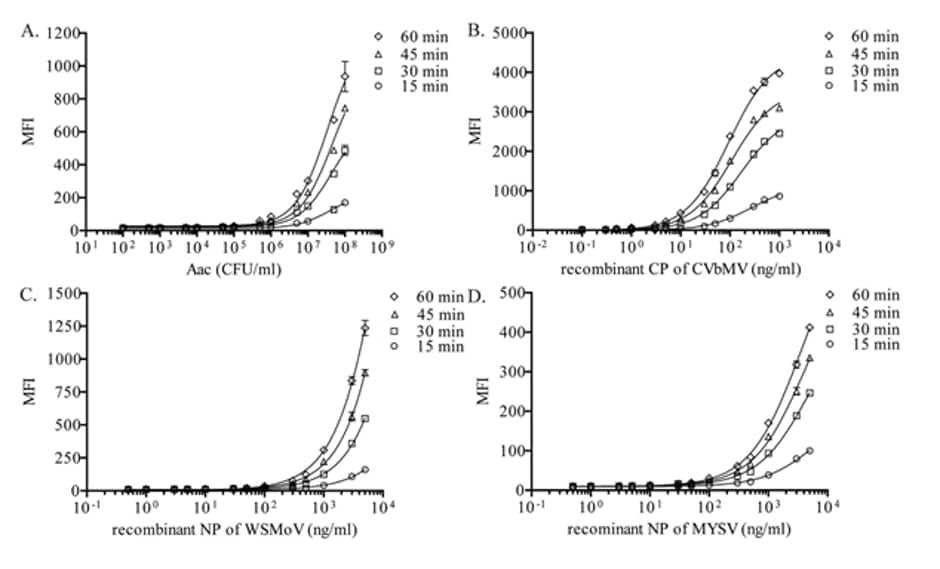 Alkaline phosphatase Conjugation Kit - Lightning-Link® labeling antibodies for sandwich ELISA