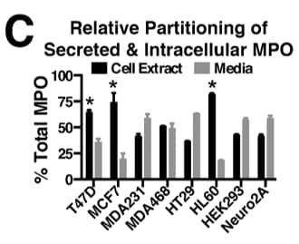 HRP Conjugation Kit - Lightning-Link® labeling polyclonal goat and Mab-16E3 anti-MPO antibodies for ELISA