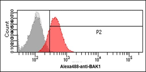 Flow Cytometry - Anti-Bak antibody [AT38E2] (ab104124)