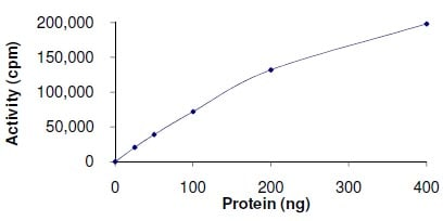 Functional Studies - Recombinant human CDK1 + Cyclin-A1 protein (ab104617)