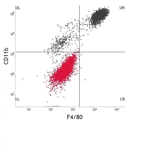 Flow Cytometry - FITC Anti-F4/80 antibody [CI:A3-1] (ab105155)