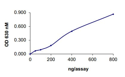 Functional Studies - Recombinant human Cdc25A protein (ab105905)