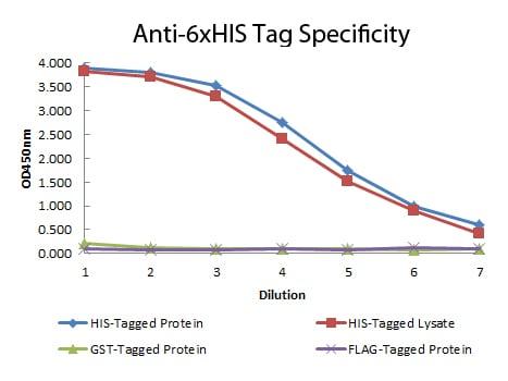 ELISA - Biotin Anti-6X His tag® antibody [33D10.D2] (ab106261)