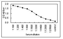 Sandwich ELISA - HRP Anti-IgA antibody [KT40] (ab106765)