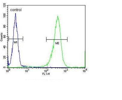 Flow Cytometry - Anti-ARHI antibody (ab107051)