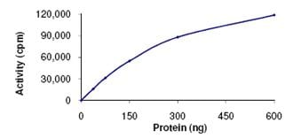 Functional Studies - Recombinant human SPAK protein (ab107696)