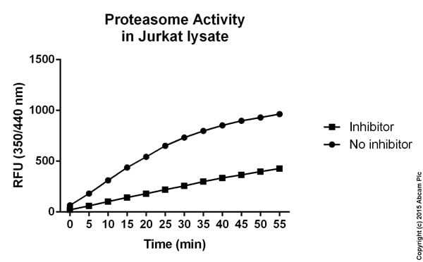 Functional Studies - Proteasome Activity Assay Kit (ab107921)