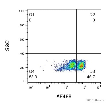 Flow Cytometry - Anti-CD8 alpha antibody [EP1150] (ab108343)