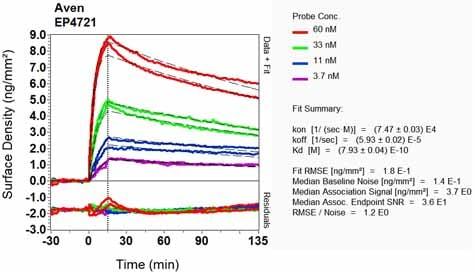 OI-RD Scanning - Anti-AVEN antibody [EP4721] (ab108354)