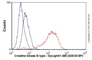 Flow Cytometry - Anti-Creatine kinase B type antibody [EPR3926] (ab108388)
