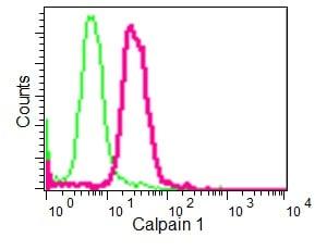 Flow Cytometry (Intracellular) - Anti-Calpain 1 antibody [EPR3319] (ab108400)