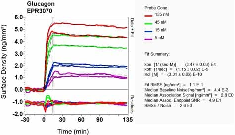 OI-RD Scanning - Anti-Glucagon antibody [EPR3070-45] (ab108426)