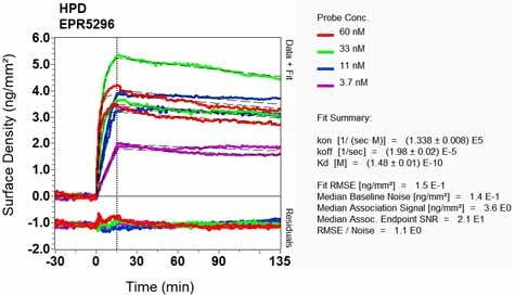 Other - Anti-HPD antibody [EPR5296] (ab108506)
