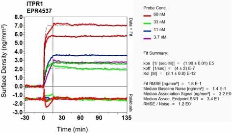 Other - Anti-IP3 receptor antibody [EPR4537] (ab108517)