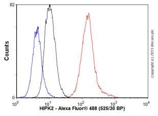 Flow Cytometry - Anti-HIPK2 antibody [EPR3819] (ab108543)
