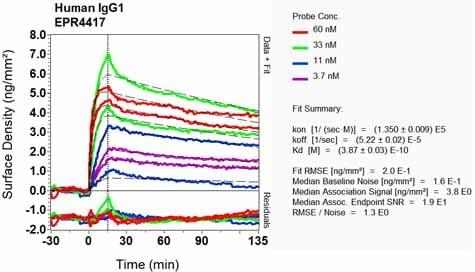 Other - Anti-IgG1 antibody [EPR4417] (ab108969)