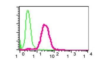 Flow Cytometry - Anti-PKN antibody [EPR3238] (ab108973)