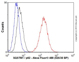 Flow Cytometry - Anti-SQSTM1 / p62 antibody [EPR4844] - Autophagosome Marker (ab109012)