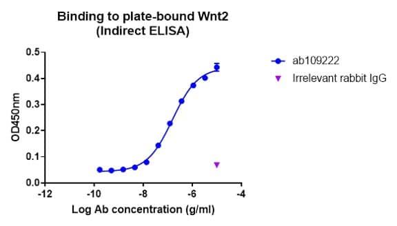 Indirect ELISA - Anti-Wnt2/IRP antibody [EPR3101(2)] (ab109222)